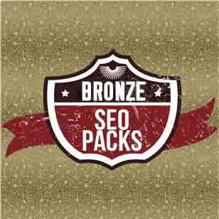 bronze seo pack