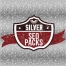 silver seo pack